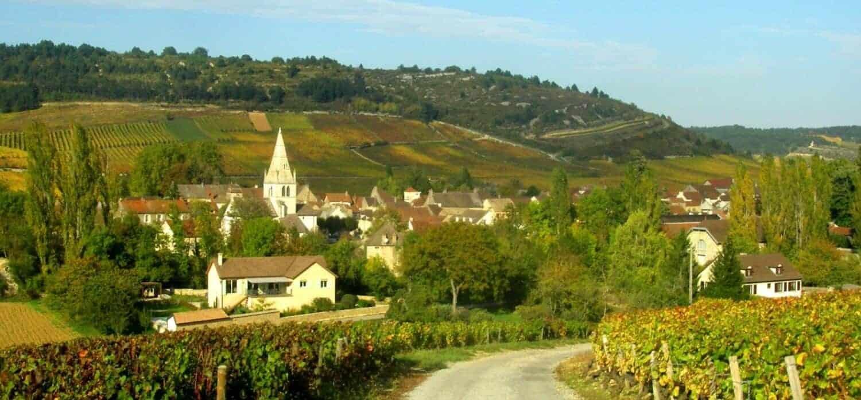 Auxey-Duresses_paysage bourgogne, fransk vin